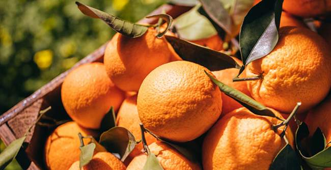 Vitamin C: What Does It Do For Your Skin?